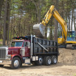 Stock Photo: Dump truck and excavator
