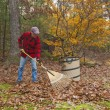 Senior raking leaves — Stock Photo