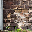 Brick wall with pipe - Photo