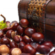 Chestnuts in the chest and about on a white background — 图库照片