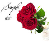 A beautiful bouquet of three red roses with sample text — Stock Photo