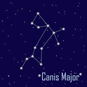 """The constellation """" Canis Major"""" star in the night sky. Vector i — Stock Photo"""