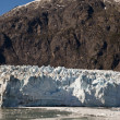 Alaska, glacier bay — Photo #7782416