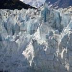 Aljaška, glacier bay — Stock fotografie