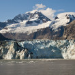Alaska, Glacier Bay — Stock Photo #7782817