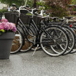 Bicycles — Stock Photo #7783398