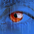 Digital eye -  