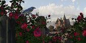 Blue Jay Among The Roses — Stock Photo