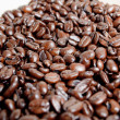 The bunch of coffee beans — Stockfoto
