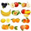 Group with different sorts of fruit. Vector. — Stock Vector #6995801