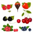 Group of berries. - Stock Vector