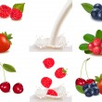 Raspberry and strawberry falling into the milk splash. Vector illustration. — Stock Vector