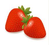 Två jordgubbar med blad. vektor. — Stockvektor