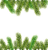 Xmas tree branches. Vector — Stock Vector