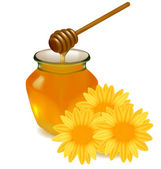 Honey with wood stick and flowers. Vector illustration. — Stock Vector