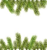 Boże narodzenie drzewo gałęzie. wektor — Wektor stockowy