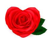 Tarjeta de felicitación de san valentín con corazones de rosas. vector. — Vector de stock