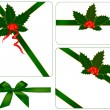 Collection of red and green bows with ribbons and holly. Vector. — Stock Vector