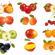 Group with different sorts of fruit. Vector. — Stock Vector #7871143
