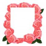 Roze rozen en Witboek kaart. vector — Stockvector
