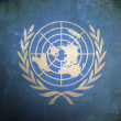 Grunge United Nations Flag — Stok fotoğraf