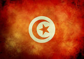 Grunge Tunisian Flag — Stock Photo