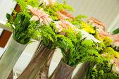 Vazo çiçeği — Stok fotoğraf