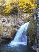 Honey waterfalls and autumn. The North Caucas. — Stock Photo