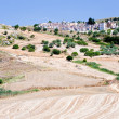 Agricultural fields and old catholic cemetery in Sicily — Stockfoto
