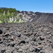Hardened lava flow on volcano slope of Etna, Sicily — 图库照片