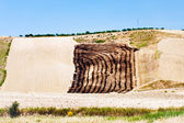 Harvested fields on hill slope — Stock Photo