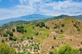 View on Etna in summer day — Foto Stock