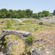 Antique Roman amphitheater in Syracuse - Stock Photo