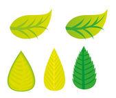 Liść zielony — Wektor stockowy