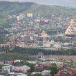 Tbilisi — Stock Photo #6889002