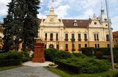 Brasov townhall and Capitoline Wolf Statue in front — Stock Photo