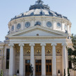 Bucharest atheneum — Stock Photo #7206513