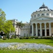 Bucharest atheneum - Stock Photo