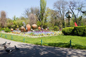 Bucharest parks and gardens, Cismigiu — Stock Photo