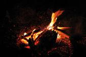 Ampfire et le camping — Photo
