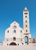 Trani cathedral, Apulia, Italy — Stock Photo