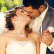 Bride and groom kissing — Stock Photo #7321307