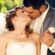 Bride and groom kissing - Stok fotoraf