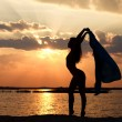 Woman&#039;s silhouette - Stockfoto