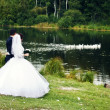 Newlyweds - Stock fotografie
