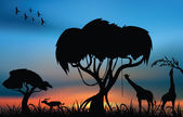 African savanna — Stockfoto