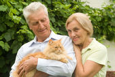Elderly couple with cat — Stockfoto