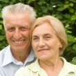 Cute old couple at nature - Stock Photo
