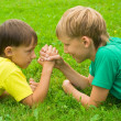 Two boys on grass — Stock Photo #6938808