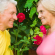 Aged cute couple - Stock Photo